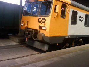 DSC07754